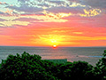 Sunset Kahili